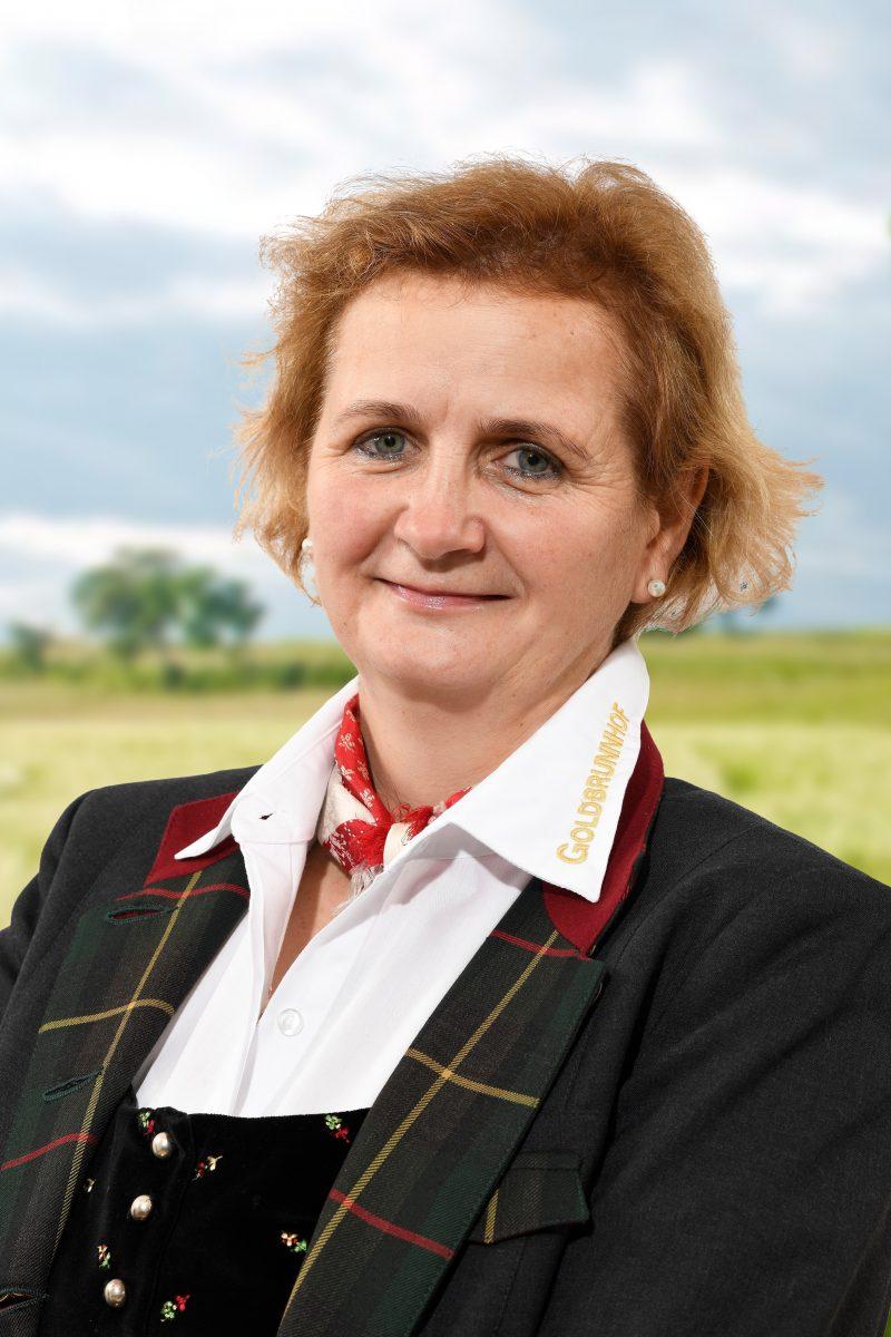 Ing. Ilse Scheicher